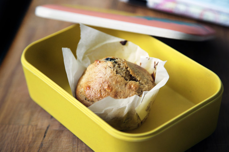Muffin in a Lunchbox - Credit Unsplash
