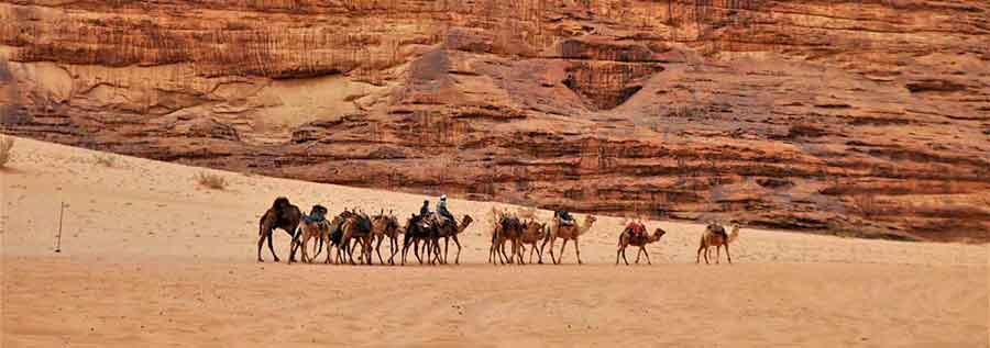 Wadi Rum Camp - Experience Bedouin hospitality on an exciting stay at a Wadi Rum Desert Camp 17