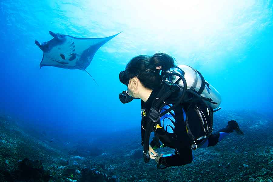 Swimming with manta rays is a definite must for your Bali bucket list. Manta Point Nusa Penida is one of the easiest places to swim with these beautiful giants. This amazing experience needs to be on your Bali itinerary. Swim with manta rays as an easy day trip from Bali or Nusa Penida. #Bali #NusaPenida #Ocean #ScubaLife
