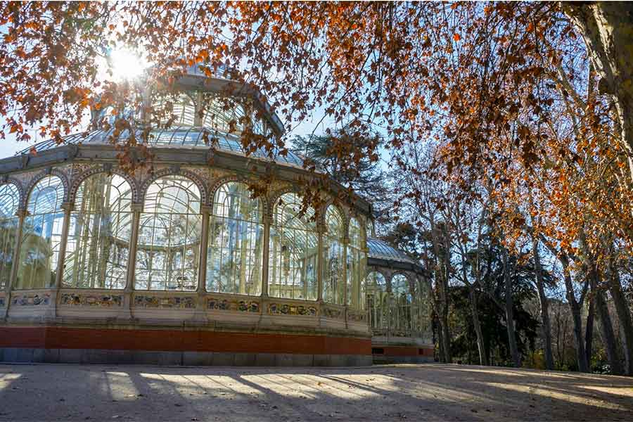 Madrid In Winter: 19+ Awesome Things to do during Winter in Madrid 2