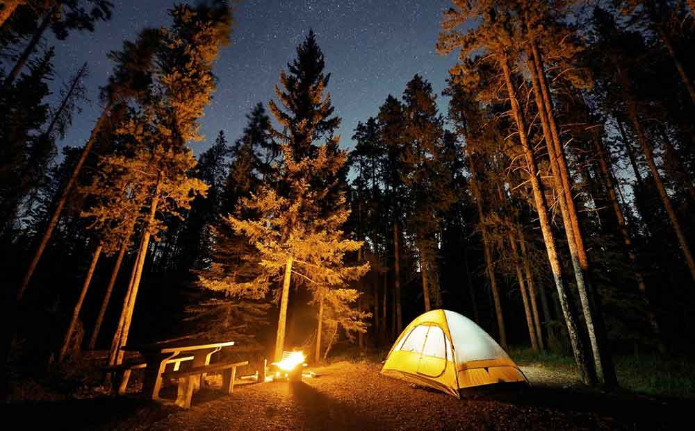 a tent in a forest at night time with a glowing light coming out from inside it